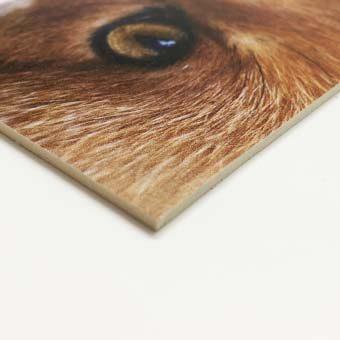 Material rígid cartró compacte